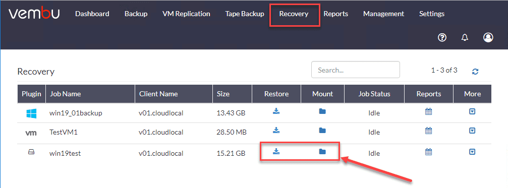 Recovery-options-for-the-physical-server-including-restore-and-mount Physical Server Backup and P2V with Vembu