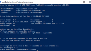 Verifying-the-imported-WSL2-image-runs-on-the-destination-workstation